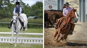 Different Riding Disciplines
