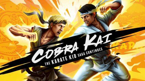 Karate Kid Hero
